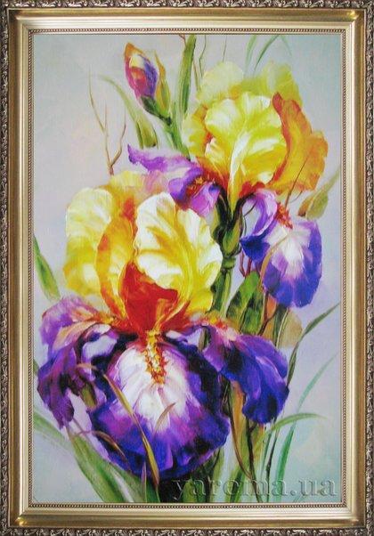 іриси фото квіти